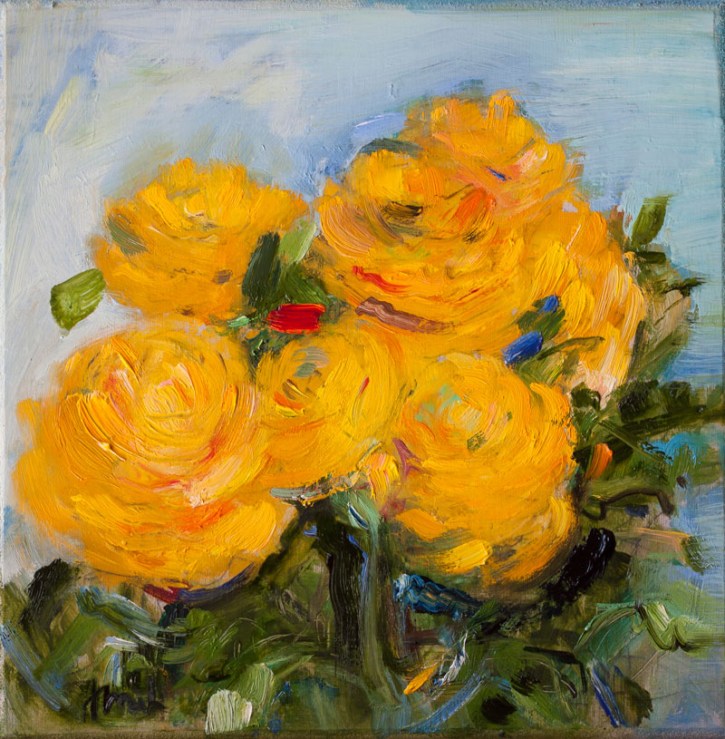 yellow ranunculus flowers – anna fine art
