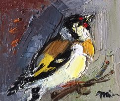 Small Goldfinch Bird